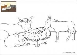 Coloriage de Noël, L'enfant Jésus entouré des animaux de la crèche à imprimer pour les enfants